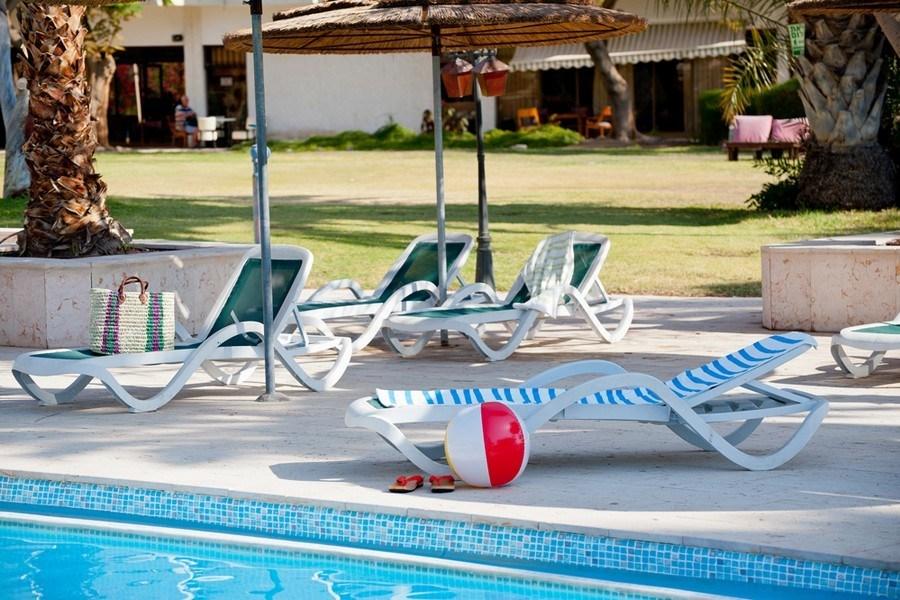 כיסאות נוח סביב הבריכה